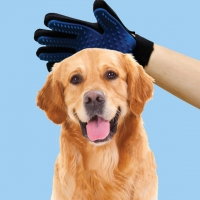 Pet Friendly Glove